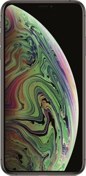 Apple iPhone Xs Max 512Gb Space Gray - фото 10857